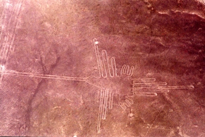 curly nomad peru nazca humminbird photo