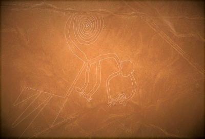 curly nomad peru nazca monkey image