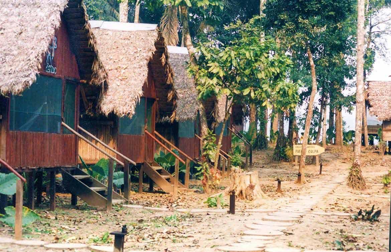 curly nomad peru amazon river eco amazonia lodges image