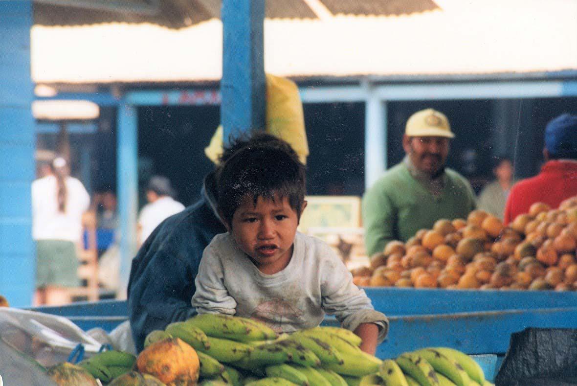 curly nomad peru amazon river puerto maldonado market image