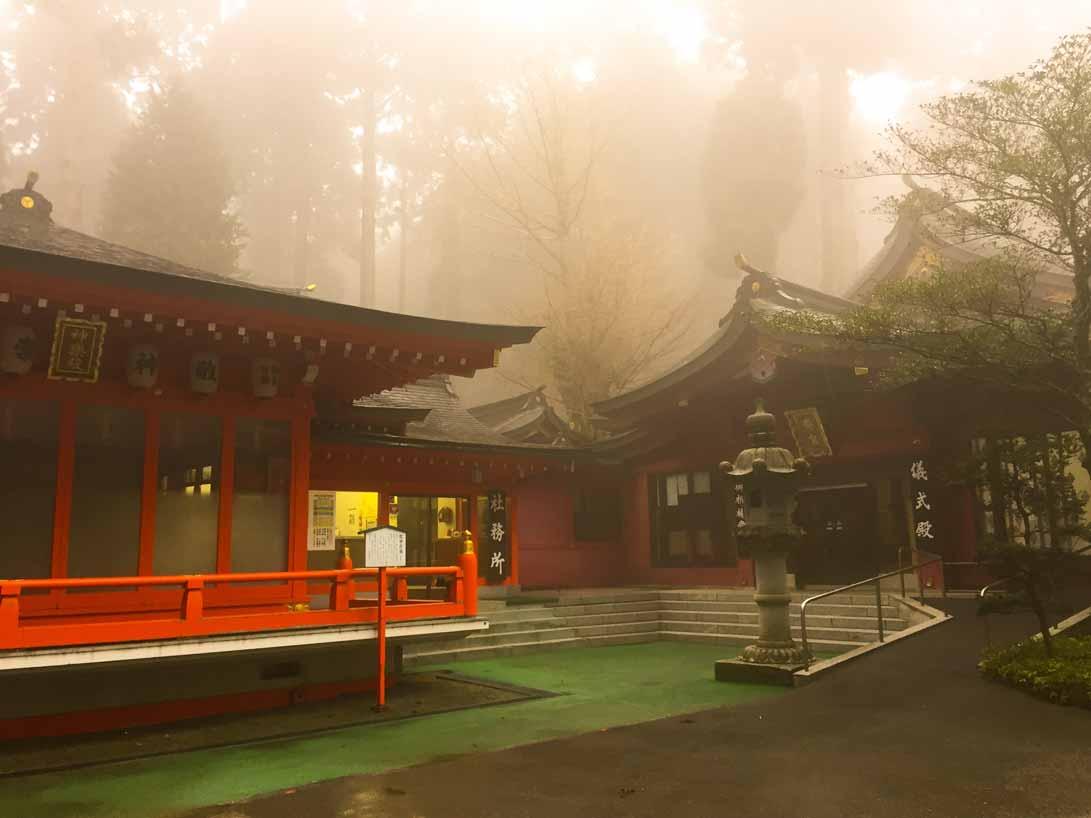 curly nomad asia japan mist fog temple sakura hanami cherry tree image