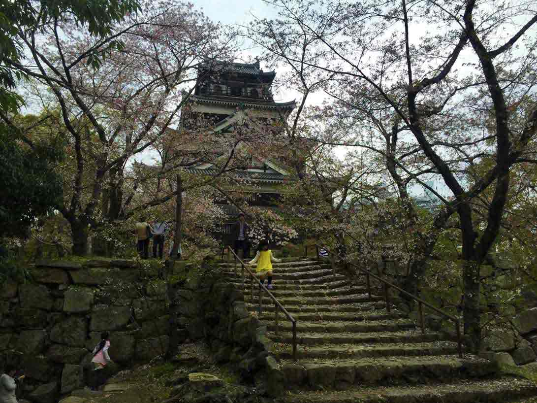 curly nomad asia japan pagoda temple sakura hanami cherry tree girl yellow dress image
