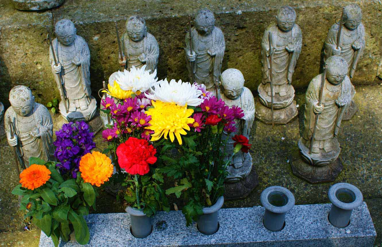 curly nomad asia japan temple flowers zen photo